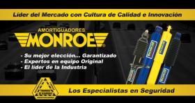 Amortiguadores Radial-Matic  Monroe