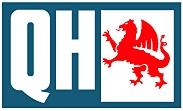 ROTULA DE DIRECCION  Qh - Quinton Hazell
